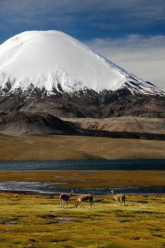 Lake Chungara, Lauca National Park Chile