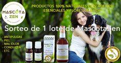Gana un lote de productos naturales de MascotaZen para tu perro o tu gato!!!