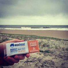 Waxhead bars = the perfect #hurricane food. They're loaded with antioxidants vitamins protein and requires no refrigeration! Everyone be safe out there! - http://ift.tt/1HQJd81