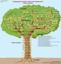 l'arbre de la géographie française: du mind mapping au mindscaping