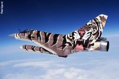French Mirage 2000 Tiger