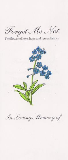 Precious Tips for Outdoor Gardens - Modern Flower Names, Flower Art, Forget Me Nots Flowers, Forget Me Not Tattoo, Forget Me Not Seeds, Rock Flowers, Flower Meanings, Language Of Flowers, Flower Quotes