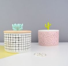 Succulent Or Cactus Jewellery Box
