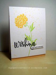 PTI MIM 235, Share Joy 16, SSSW 30-12 (PTI Daydreamer, SSS Wishing)
