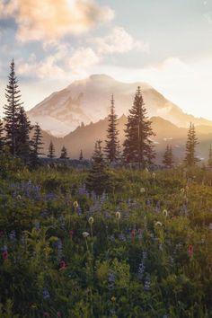 Mt Rainier National Park - photo by: Scott Kranz Theme Nature, All Nature, Beautiful World, Beautiful Places, Landscape Photography, Nature Photography, Landscape Photos, Mt Rainier National Park, Images Instagram