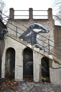 Street Art #Stockholm (by Roa)