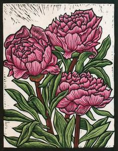PEONY ROSE 29.5 X 23 CM EDITION OF 50 HAND COLOURED LINOCUT ON HANDMADE JAPANESE PAPER $500