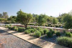 Quilapilun_Botanic_Garden_Park-Panorama_Architects-11-SW « Landscape Architecture Works   Landezine