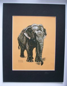 Elephant Print Gladys Emerson Cook Wild Animal Colored Bookplate 1943 11x14…