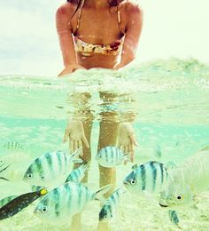 Crystal clear water and tropical fish.
