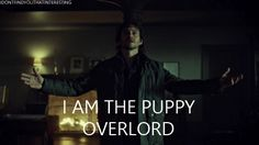 idontfindyouthatinteresting: Bow wow down to the puppy overlord. #Hannibal