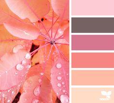 Autumn Glow - https://www.design-seeds.com/seasons/autumn/autumn-glow