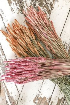 Meadow Flowers, Diy Flowers, Floral Room, Dry Plants, Hand Bouquet, How To Preserve Flowers, Aesthetic Backgrounds, Flower Market, Flower Power