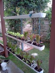 green thumb hydroponic supplies inc jpg 853x1280