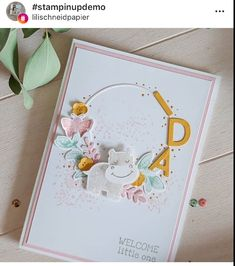 Stampin Up Catalog, Paper Pumpkin, Stamp Sets, Stamping Up, Baby Cards, Stampin Up Cards, Cardmaking, Card Ideas, Happy Birthday