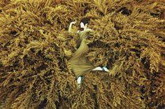 Untitled by Pandora Selezneva on 500px