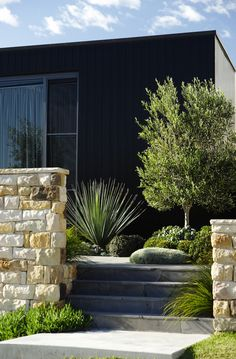 Front Gardens: Designed and constructed by Secret Gardens of Sydney.