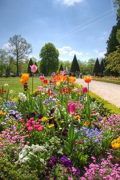 Wonderful and colorful spring flowers flourishing in the Residenz / Residence garden of Würzburg, Franconia, Germany