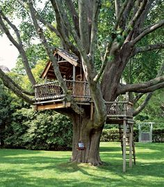A big or small tree house bring lots of fun into backyard designs and create playful and youthful atmosphere. Tree house designs are wonderful backyard ideas that make adults and kids happy and joyful 10 Tree, In The Tree, Backyard Treehouse, Treehouse Ideas, Treehouses For Kids, Magic Treehouse, Backyard Playground, Outdoor Spaces, Outdoor Living