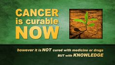 Cancer Killers Your Doctor Will Never Tell You About: How many people must die from cancer because the Medical/Pharmaceutical/Insurance Conglomerate REFUSES to tell you about Low Cost, Safe, Natural Cures for Cancer? Well, You don't because here is the information you need to Cure Yourself... http://wp.me/p4rplg-37