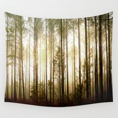 Buy Glowing Forest by kelly*n photography as a high quality Wall Tapestry. Worldwide shipping available at Society6.com. Just one of millions of products available.