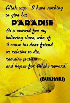 Hadith ( saying ) of Prophet Muhammad ( saw ) Bukhari
