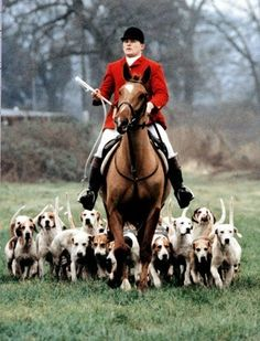 It's not a hunt, it is an ambush with a posse! Where is the sport in this farce?!?