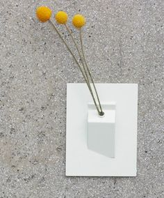 flat wall vase - could be very cute in my cubicle!