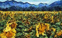 Impressionism Van Gogh | Sunflowers in Die,France DAP Van Gogh