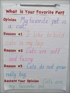 opinion/persuasive