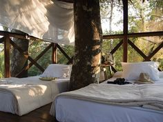 How the inside of every treehouse should look :)