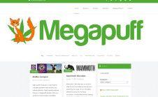 setup your WordPress theme or help you choose one