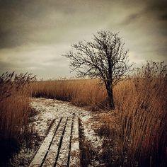 Winter's end - polder, Groningen, The Netherlands, Instagram