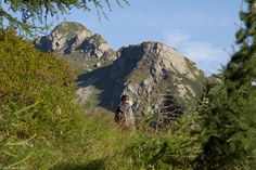 In der Natur unterwegs: Vier Täler, drei Pässe im Locarnese - Wieder ein wunderschöner Wandertag - #ExpeditionLocarnese