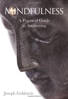 Mindfulness: A Practical Guide to Awakening by Joseph Goldstein,http://www.amazon.com/dp/162203063X/ref=cm_sw_r_pi_dp_DYLqtb0FN0GZK3CP