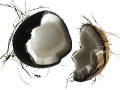 Is coconut oil good for you? Learn more at Q blog by @equinox