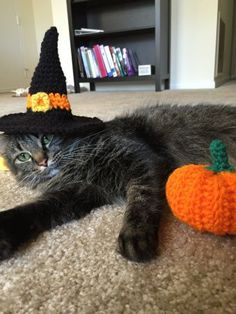 Halloween Cat Witch Hat - free crochet pattern by Abbey Jackson / Yarn Isomerase