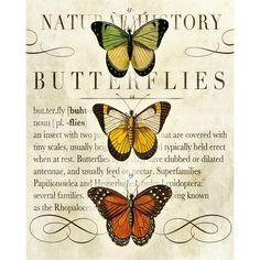 Butterflies II Tabletop Décor at Joss & Main