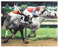 Runaway Groom(1979)Blushing Groom- Yonnie Girl By Call The Witness. 5x5 To Blenheim II. 18 Starts 6 Wins 5 Seconds 1 Third. $347,537. Won 1982 Travers S(G1) Champion 3 YO Horse In Canada In 1982.