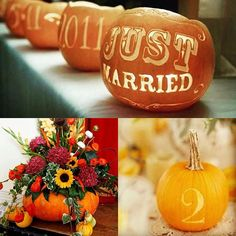 No 10 in my #autumntheme today - accessorise with #pumpkins! So versatile and instantly give an #autumnal #harvest vibe #autumnwedding #autumnflowers #carvedpumpkin #weddingtable #weddingdecor #tabledecor #tablesetting #sunflower #warmcolors #warmcolours #tablenames #weddingblog #weddingblogger photos by @the_wedding_collection @wedding_by_ferlya @truel0vewaits