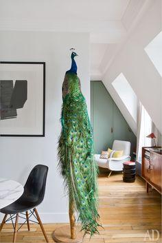 Découverte d'un adorable petit appartement sous les toits à Paris où petit espace ne rime pas avec manque de charme !
