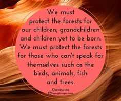 We must protect the forests for our children, grandchildren and children yet to be born. We must protect the forests for those who can't speak for themselves such as the birds, animals, fish and trees.  - Qwatsinas (hereditary chief Edward Moody), Nuxalk Nation quote #native #american #saying #nature