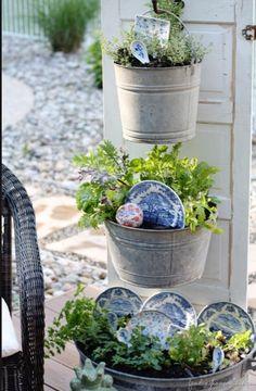 plants & plates