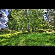 Tumbo grave field, Sweden 2015