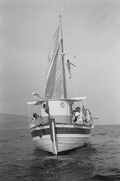 Sailing Ships, Boats, Vehicles, Diving, Boating, Rolling Stock, Ships, Boat, Vehicle