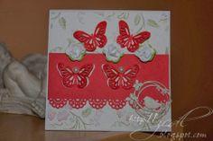 ZCDL: Vyleteli motýliky ...