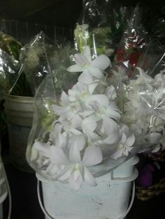 Orquídeas para bouquet y centros de mesas
