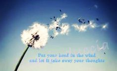 Put your head in the wind and let it take away your thoughts