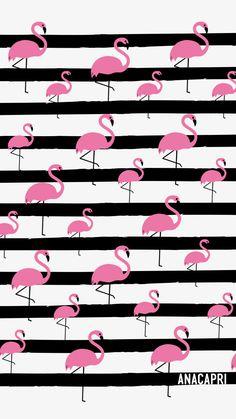 50 Ideas for wall paper fofos flamingo Flamingo Wallpaper, Flamingo Art, Summer Wallpaper, Trendy Wallpaper, Cute Wallpaper Backgrounds, Pretty Wallpapers, Pink Wallpaper, Flower Wallpaper, Pink Flamingos