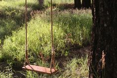 To hang from a large tree in the yard.   Wooden Rope Tree Swing With 25' of Rope by SkySaddle on Etsy, $109.10